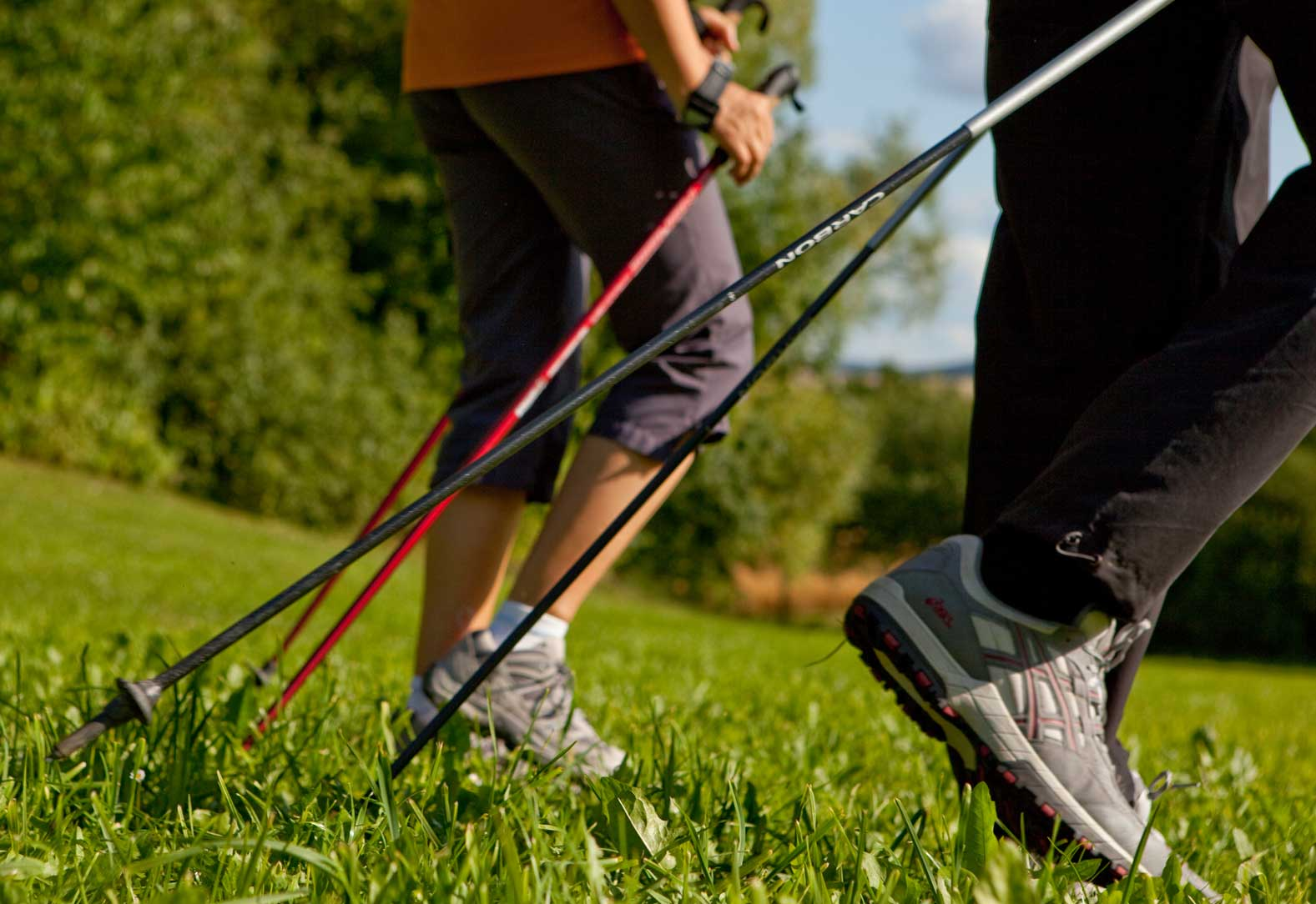 conoces el nordic walking
