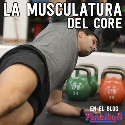 la musculatura del core