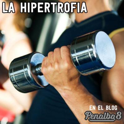 La hipertrofia muscular