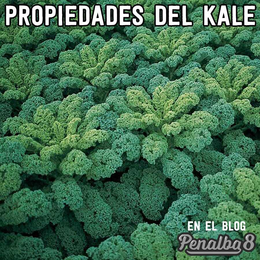 propiedades del Kale
