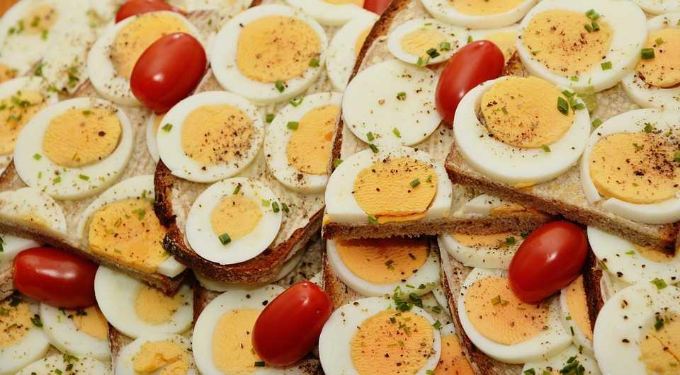 alimentacion huevos