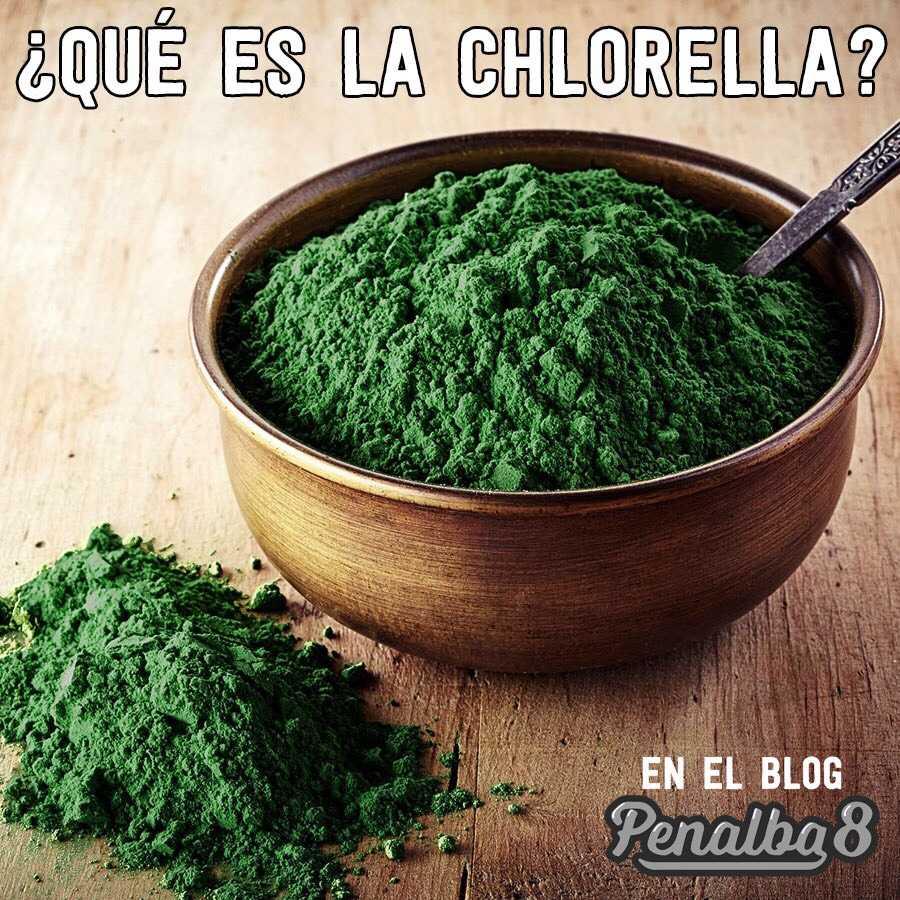 conoce los beneficios de la chlorella